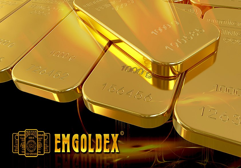 emgoldex 1000g gold bars